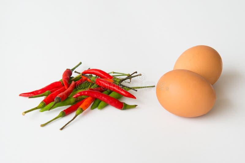 Gruppe roter und grüner Pfeffer des scharfen Paprikas mit Ei lizenzfreies stockbild