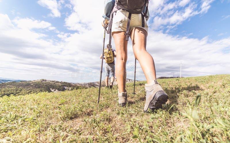 Gruppe Trekkers, die eine Exkursion machen lizenzfreies stockbild
