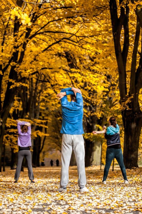 Gruppe von Personen, die im Park ausarbeitet lizenzfreie stockfotos