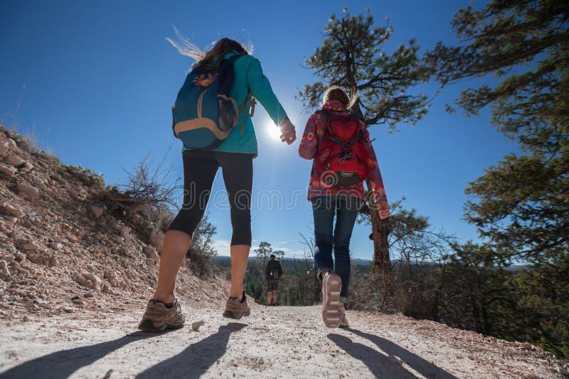 Gruppe Wanderer auf dem Gehweg lizenzfreie stockfotografie