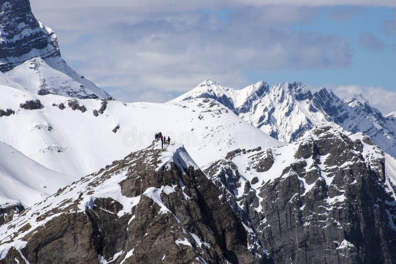 Gruppe Wanderer auf schneebedeckte Bergspitze auf Kanadier Rocky Mountains stockbild
