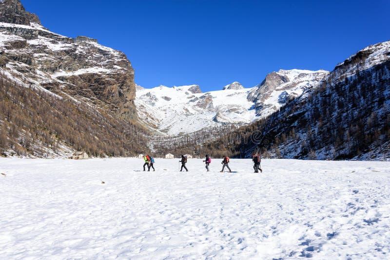 Gruppe Wanderertrekking in den Bergen der Alpen Die Trekkers laufen eine schneebedeckte Landschaft durch lizenzfreie stockfotos