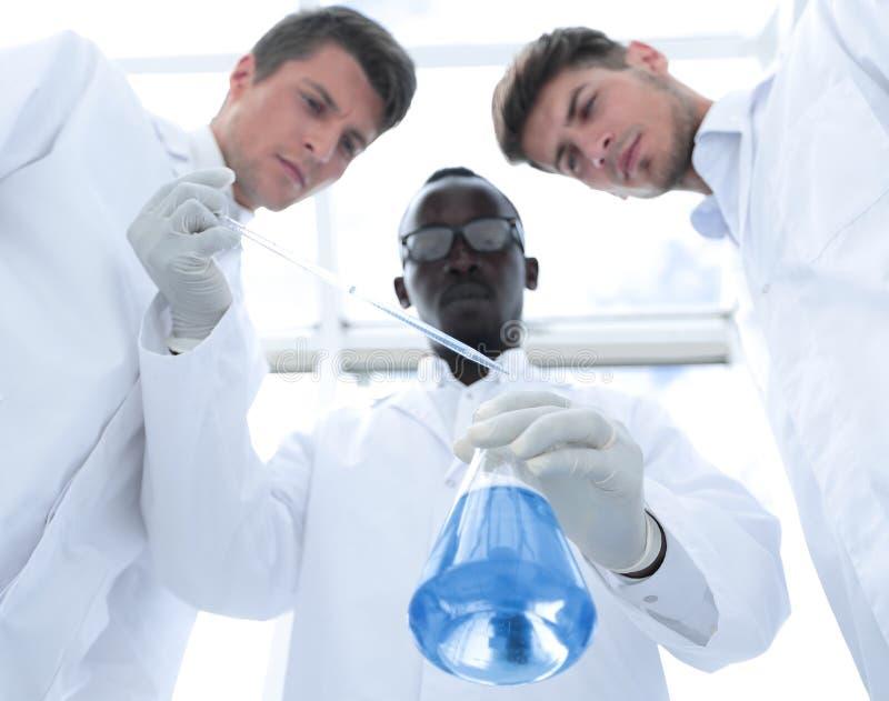 Gruppe Wissenschaftler ?berpr?ft die Fl?ssigkeit in der Flasche lizenzfreie stockfotos