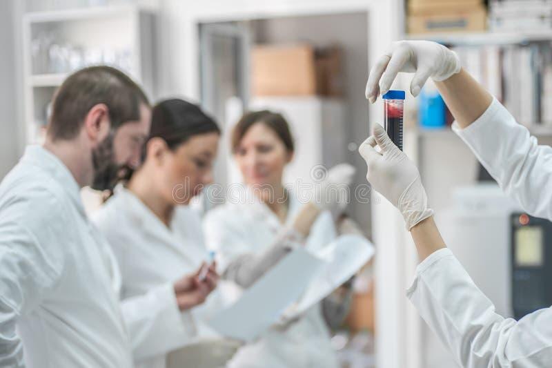 Gruppe Wissenschaftler, die mit flüssigen Reagenzglasproben arbeiten stockfoto