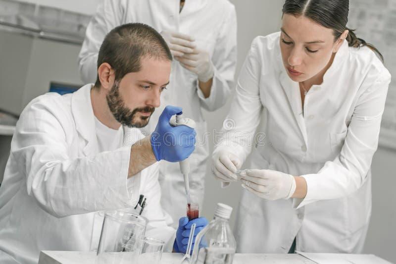 Gruppe Wissenschaftler, die mit flüssigen Reagenzglasproben arbeiten lizenzfreie stockfotografie