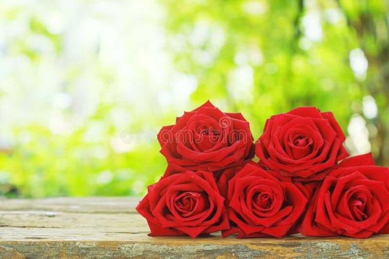 Gruppen av älskvärd blommande röd färg steg blomman på trätabellen med grön trädgårdbakgrund för suddighet, sött valentingåvabegr arkivbilder