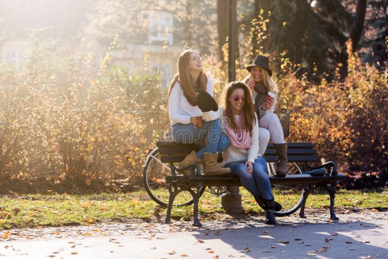Gruppen av att le högskolaflickor parkerar på bänken arkivfoto