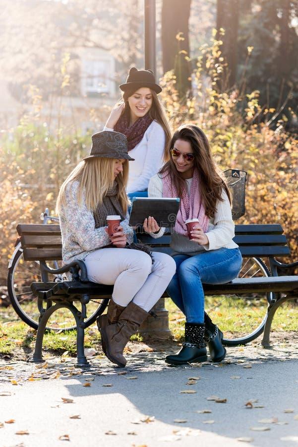 Gruppen av att le högskolaflickor parkerar på bänken fotografering för bildbyråer