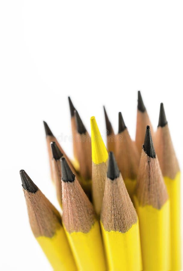 Gruppen av blyertspennor stänger sig upp skott royaltyfria bilder