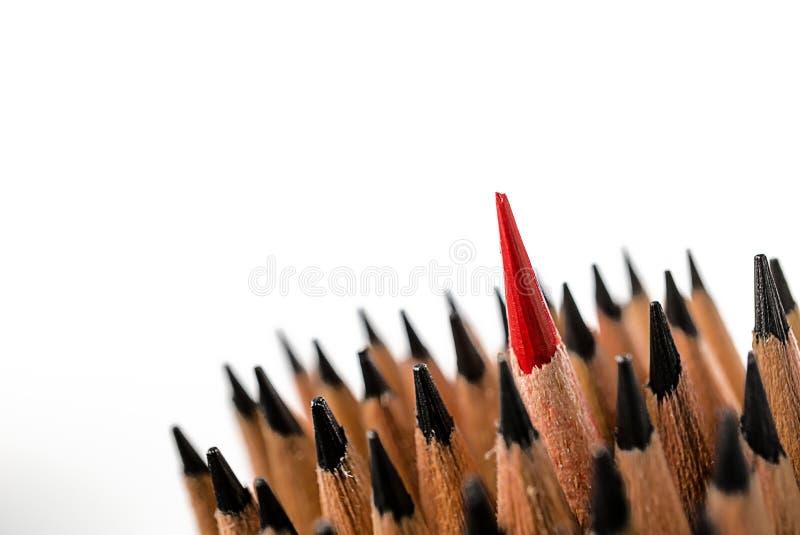 Gruppen av blyertspennor stänger upp till blyertspennan för röd färg royaltyfria foton