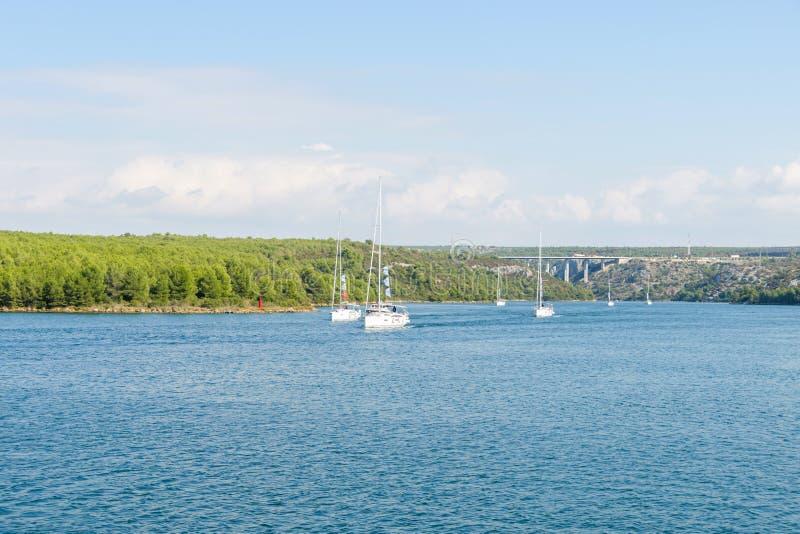Gruppen av chartern seglar, segelbåtar på den near kusten för havet arkivfoto
