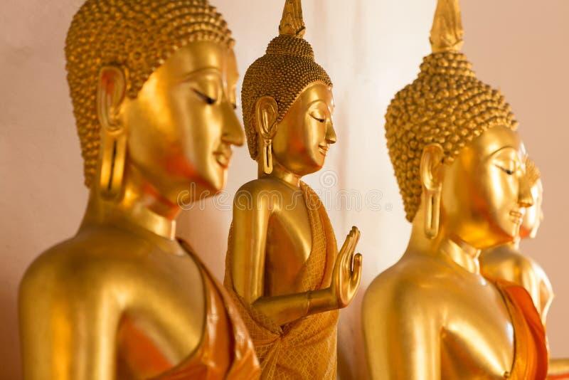 gruppen av den guld- buddha statyn i sammanträde och anseendet göra sig till arkivbilder