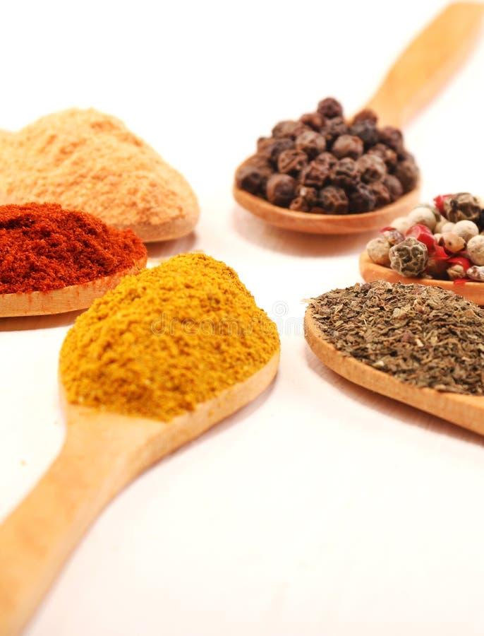 Gruppen av den indiska krydda- och örtskillnaden ware i träskedar på vit bakgrund för designfoods, grönsaken, kryddor, örte royaltyfria bilder