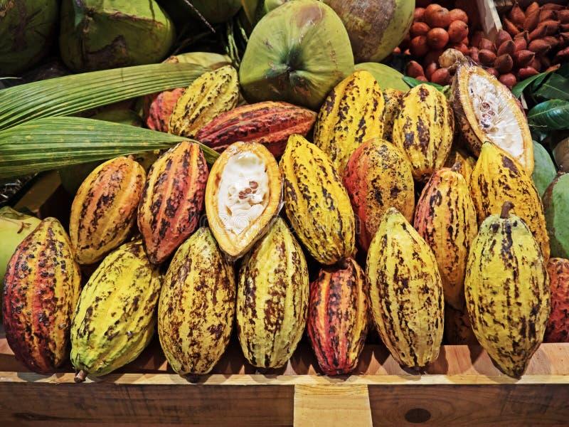 Gruppen av färgrik kakao bär frukt med skivat royaltyfri fotografi