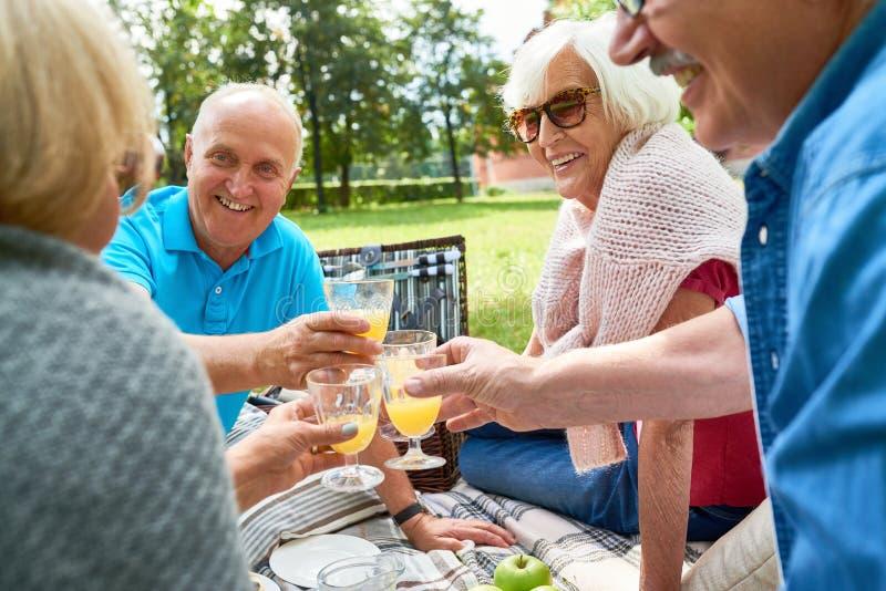 Gruppen av högt folk som tycker om picknicken parkerar in royaltyfri bild