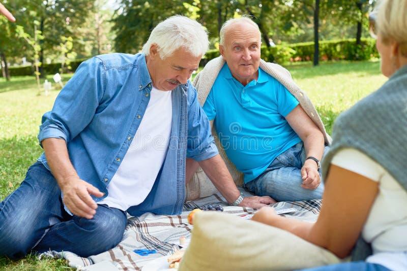Gruppen av pensionärer som tycker om picknicken parkerar in royaltyfria bilder