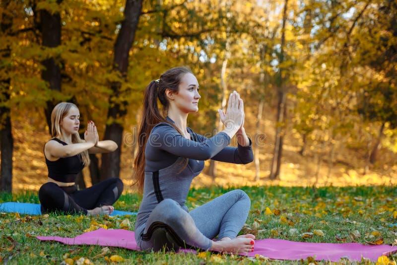 Gruppen av unga kvinnor som gör yogaövningar i höststaden, parkerar Vård- livsstilbegrepp royaltyfri bild