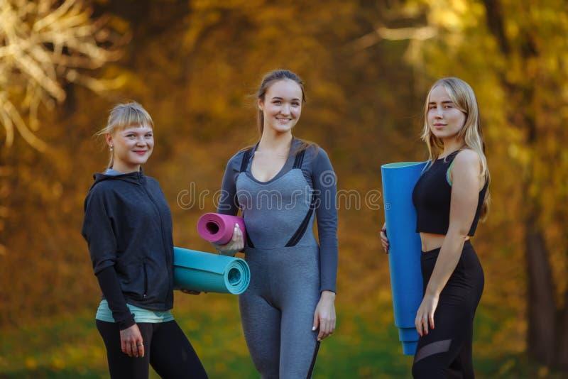 Gruppen av unga kvinnor som gör yogaövningar i höststaden, parkerar Vård- livsstilbegrepp arkivbilder