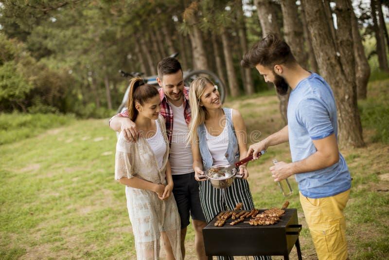 Gruppen av ungdomarsom tycker om grillfesten, festar i naturen arkivbild