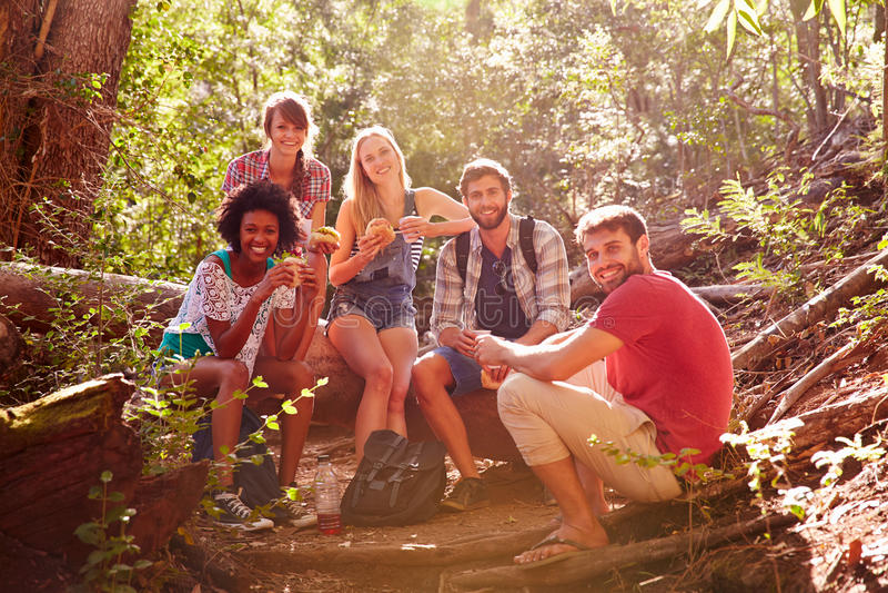 Gruppen av vänner som bryter för lunch på bygd, går royaltyfria foton