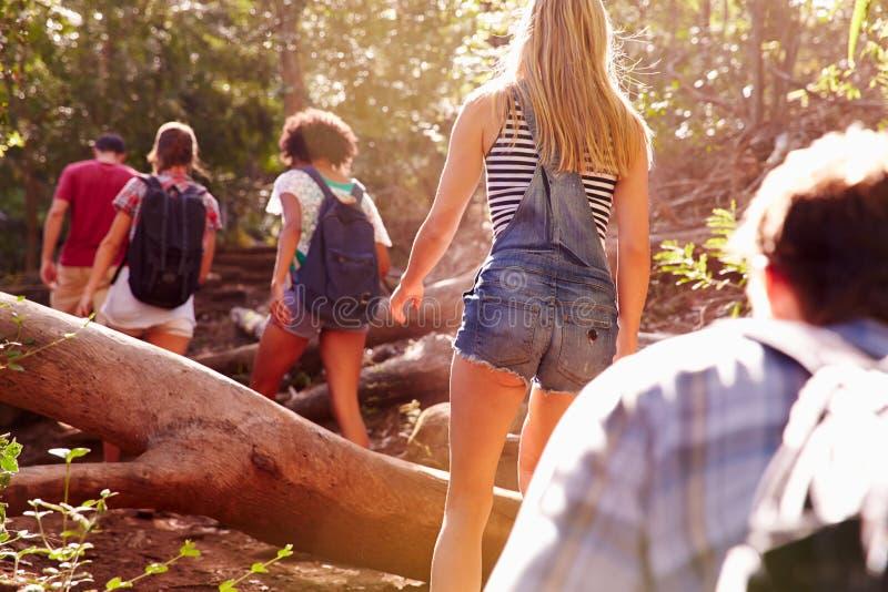 Gruppen av vänner som hoppar över trädstammen på bygd, går fotografering för bildbyråer