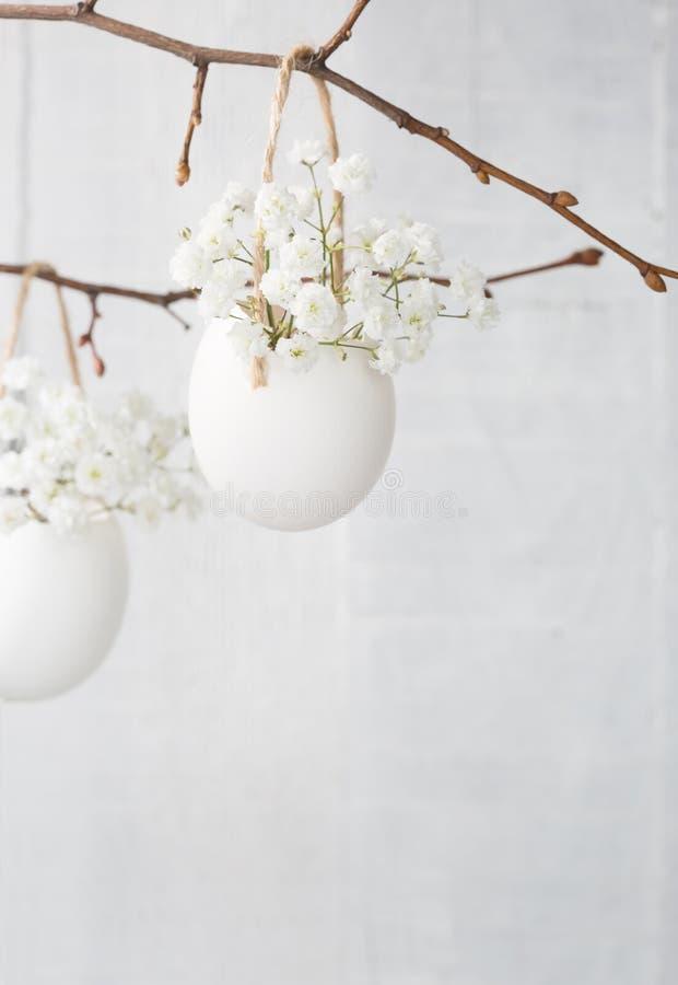 Gruppen av vit brudslöja blommar (gypsophilaen) i äggskal royaltyfria bilder