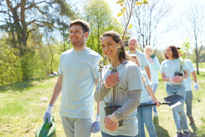 Gruppen av volontärer med träd och krattar parkerar in royaltyfri bild