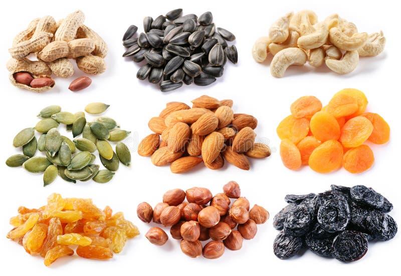 Gruppen der verschiedenen Arten der getrockneten Früchte lizenzfreie stockfotos