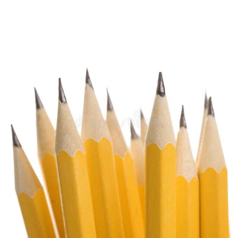 gruppen pencils sharp arkivfoto