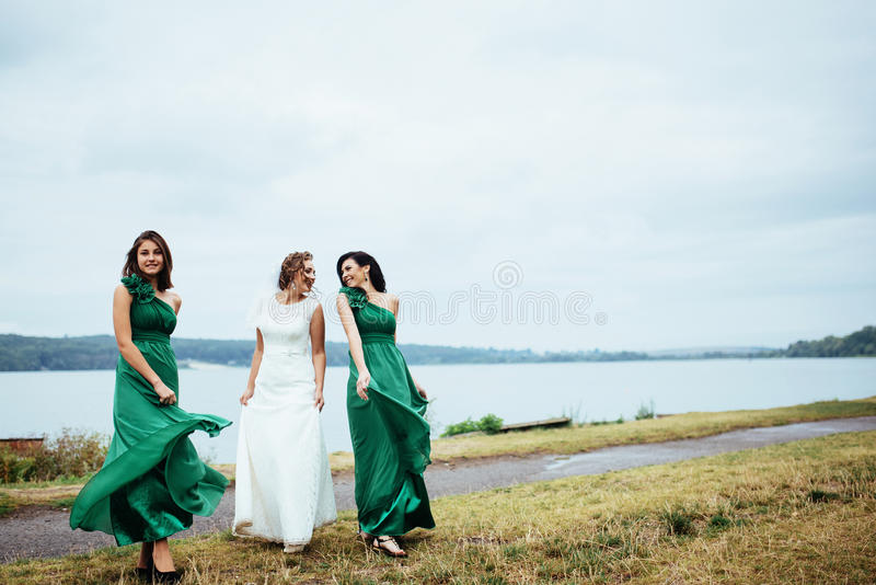 Gruppenbraut-Hochzeitssommer im Freien Ukraine Europa lizenzfreie stockfotos