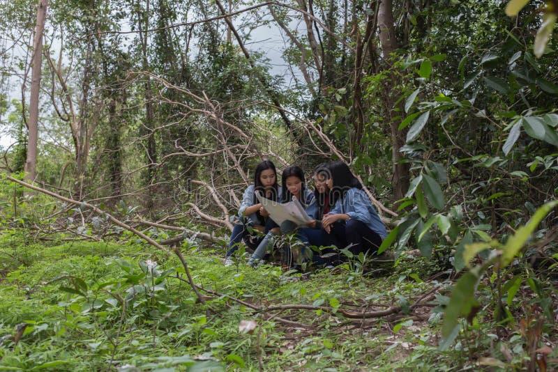 Gruppenfrauen von aufgeschlossenen jungen Frauen in der Natur stockbilder