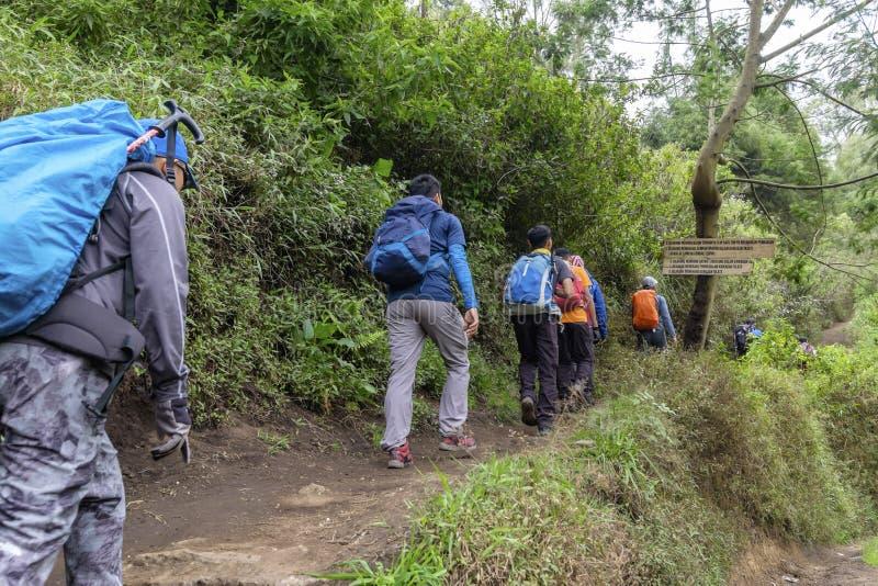 Gruppenwandereraufstieg, zum von Semeru, einer anzubringen weg vom schönen Vulkanberg in Indonesien stockbild