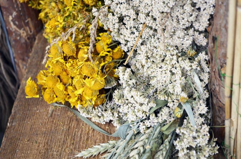 Grupper av medicinska blommor gränsar på lantligt trä royaltyfri bild