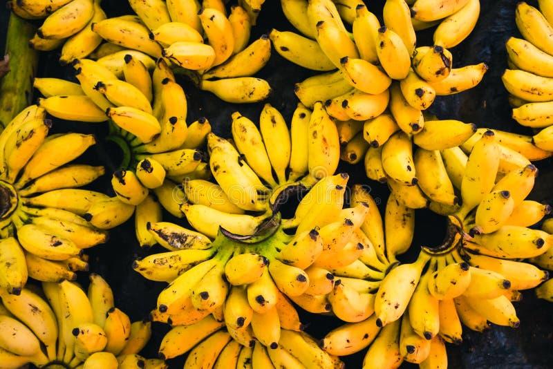 Grupper av söta bananer sålde i en marknad i Tangalle, Sri Lanka royaltyfria bilder