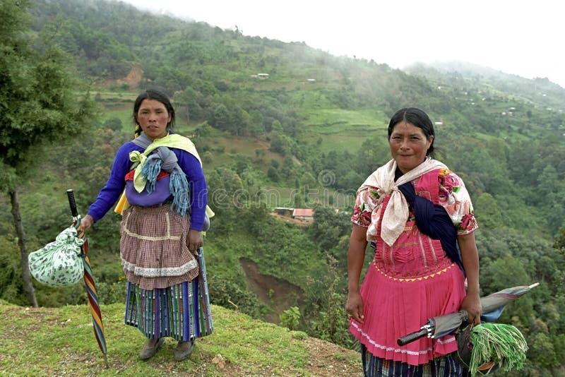 Gruppera ståenden av indiska kvinnor i bergen royaltyfria bilder