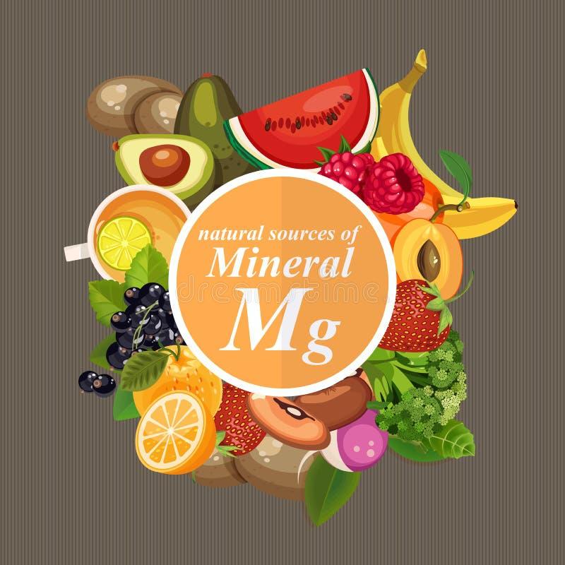 Gruppi di frutta, di verdure, di carne, di pesce sano e di prodotti lattier-caseario che contenente le vitamine specifiche magnes illustrazione di stock