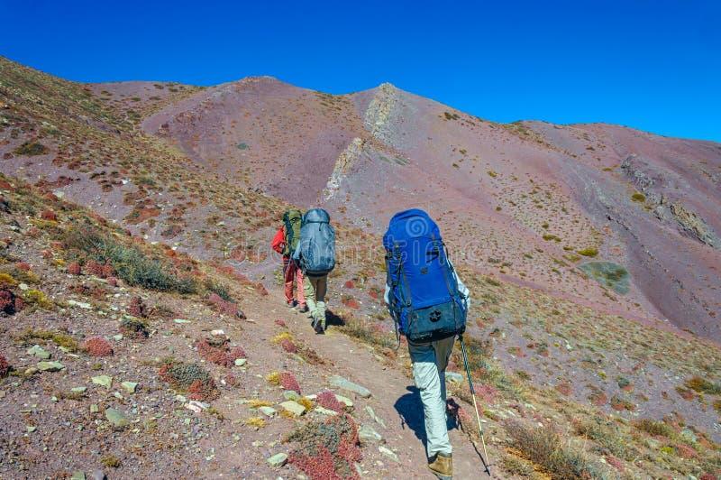 Gruppieren Sie die Trekkers, die auf der Straße gegen Leh laufen stockfoto