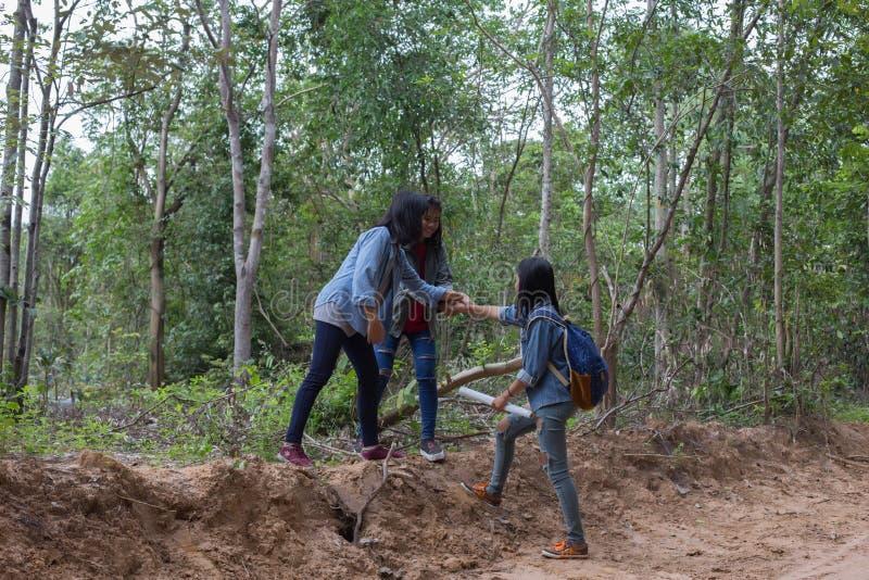 Gruppkvinnor av godmodiga unga kvinnor i natur arkivbilder