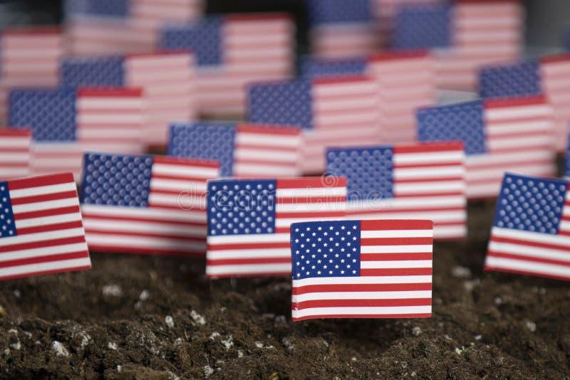 Gruppo della bandiera di U.S.A. per un fondo patriottico fotografia stock