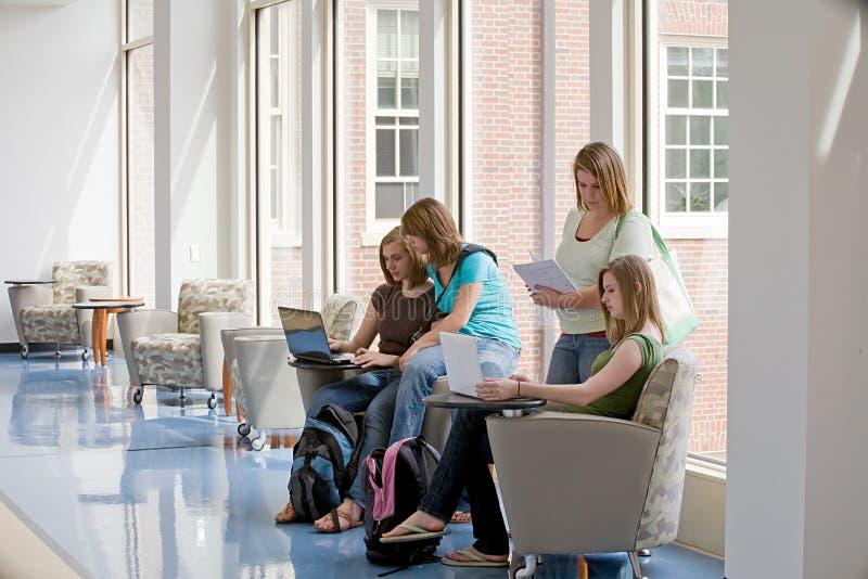 gruppo delle ragazze di istituto universitario immagini stock
