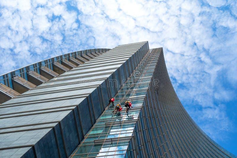 Gruppo di alpinisti in servizio per pulizia di finestre del grattacielo immagine stock libera da diritti