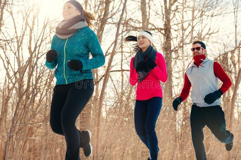 Gruppo di amici che godono che pareggia nella neve nell'inverno fotografie stock