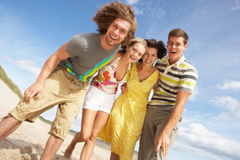 Gruppo di amici che hanno divertimento sulla spiaggia fotografia stock