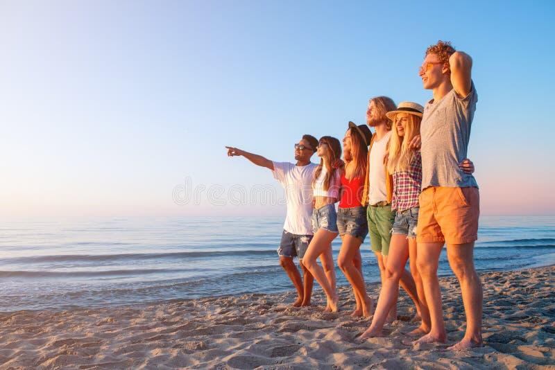 Gruppo di amici divertendosi sulla spiaggia immagini stock libere da diritti