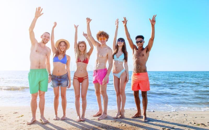 Gruppo di amici divertendosi sulla spiaggia immagine stock