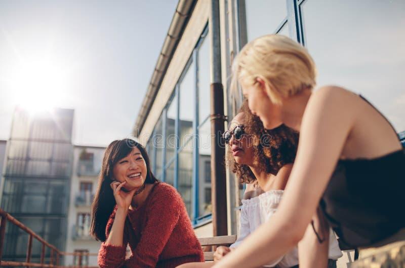 Gruppo di amici femminili in caffè del terrazzo fotografia stock