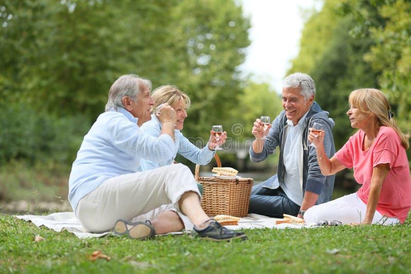 Gruppo di anziani che producono pane tostato che ha picnic fotografia stock libera da diritti