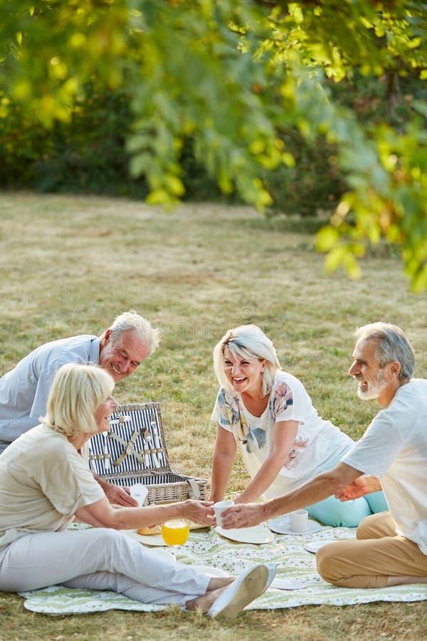 Gruppo di anziani divertendosi ad un picnic fotografia stock libera da diritti