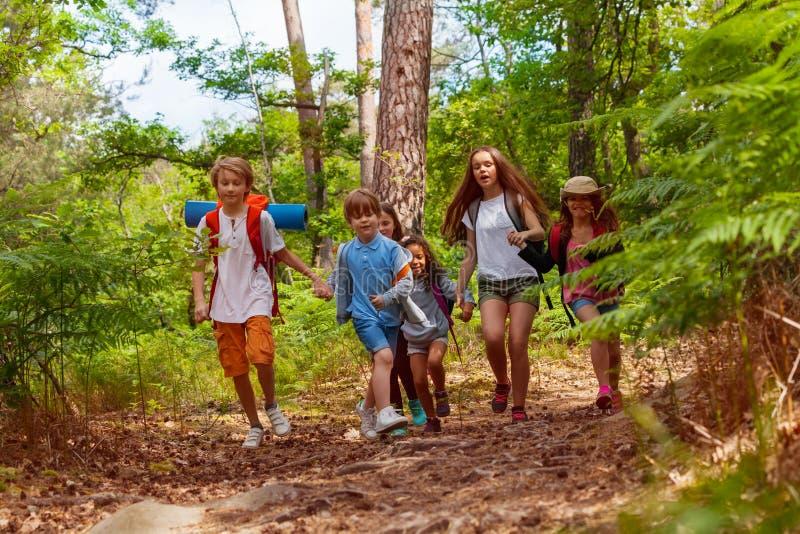 Gruppo di bambini che corrono nelle mani dell'azienda forestale immagini stock