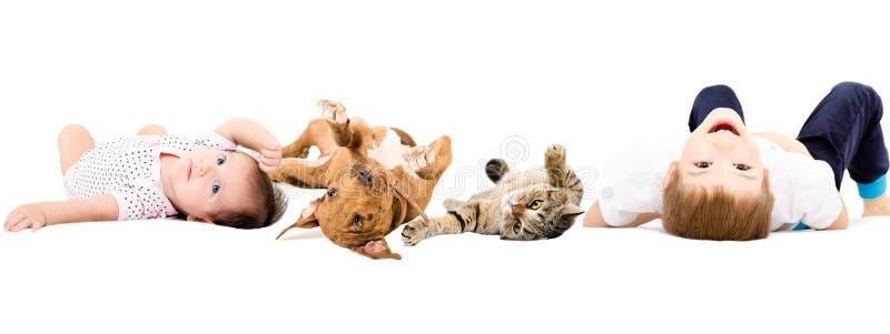 Gruppo di bambini e di animali domestici felici fotografia stock libera da diritti